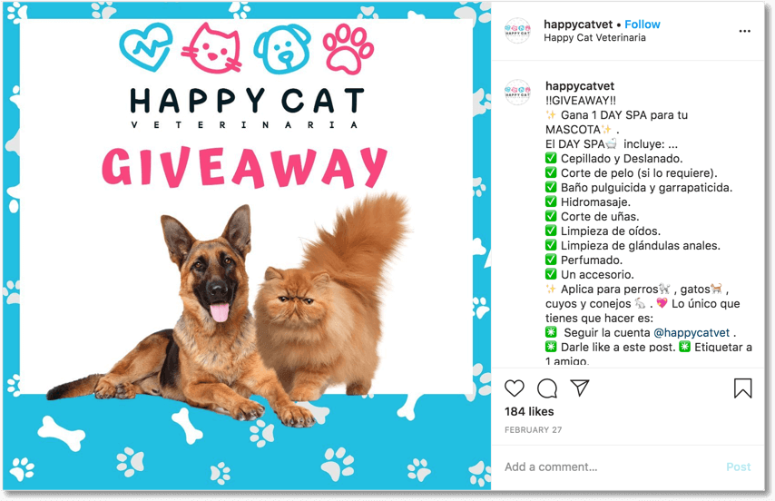 Pet giveaway organized on Instagram by a veterinary clinic
