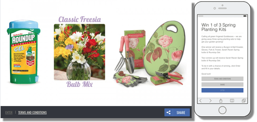 Spring promotion ideas, entry form giveaway as a way to collect leads