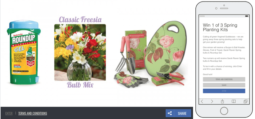 Screenshot of a spring giveaway. The main banner shows the prizes on offer, such as gardening gear and flower bulbs.