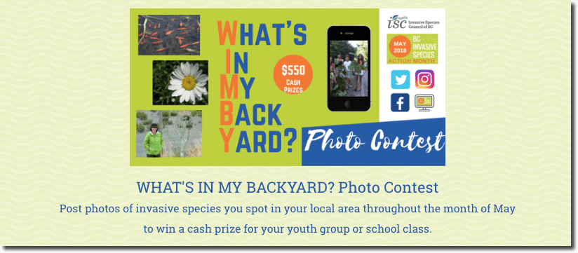 summer photo contest for kids