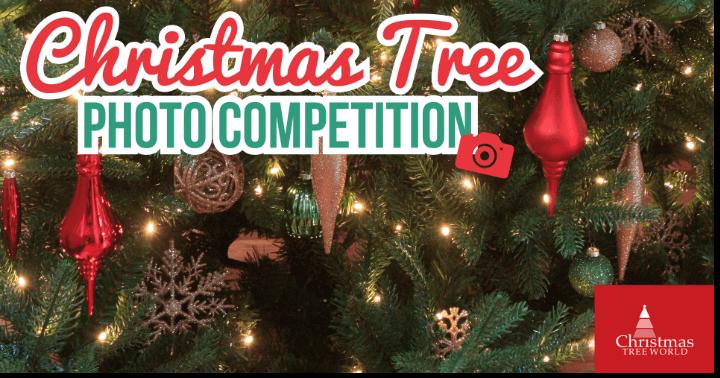 Christmas photo contest family