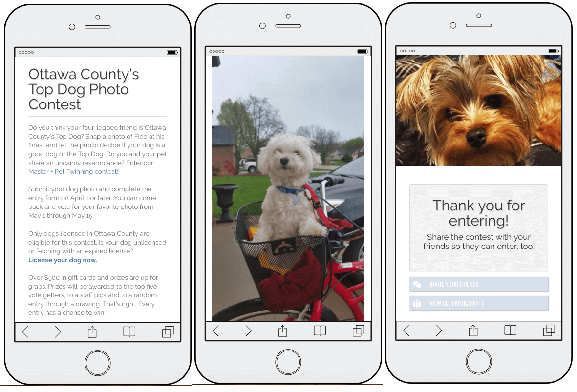 3 mobile screenshots from the Ottawa County World Animal Day promotion. The first screen announces their Top Dog photo contest. The second screen shows an example of a competition entry: a small white poodle in the front basket of a red bike. The final screen thanks users for entering.