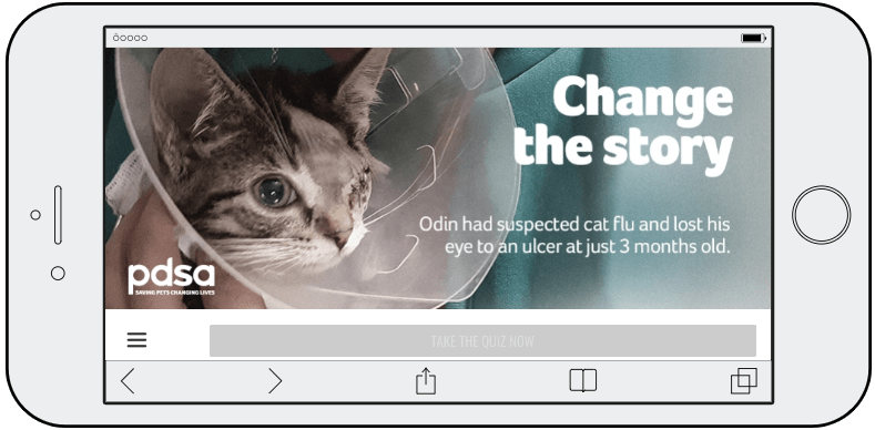 "Screenshot from a World Animal Day quiz. The image shows a cat with one eye wearing a medical cone, with the title ""Change the Story""."