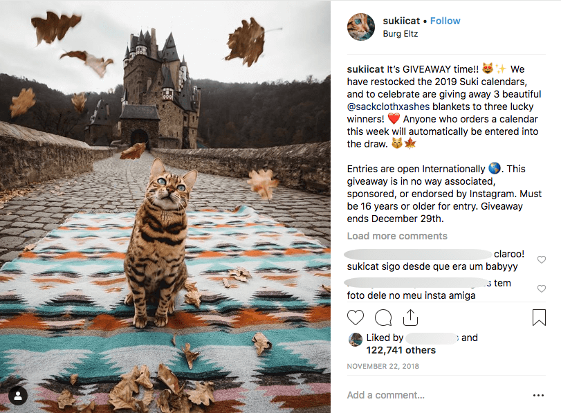 Screenshot of an Instagram post, informing users that they will enter a prize draw when they make any purchase. The photo shows a cat sitting on a blanket in front of a castle as leaves fall around it.