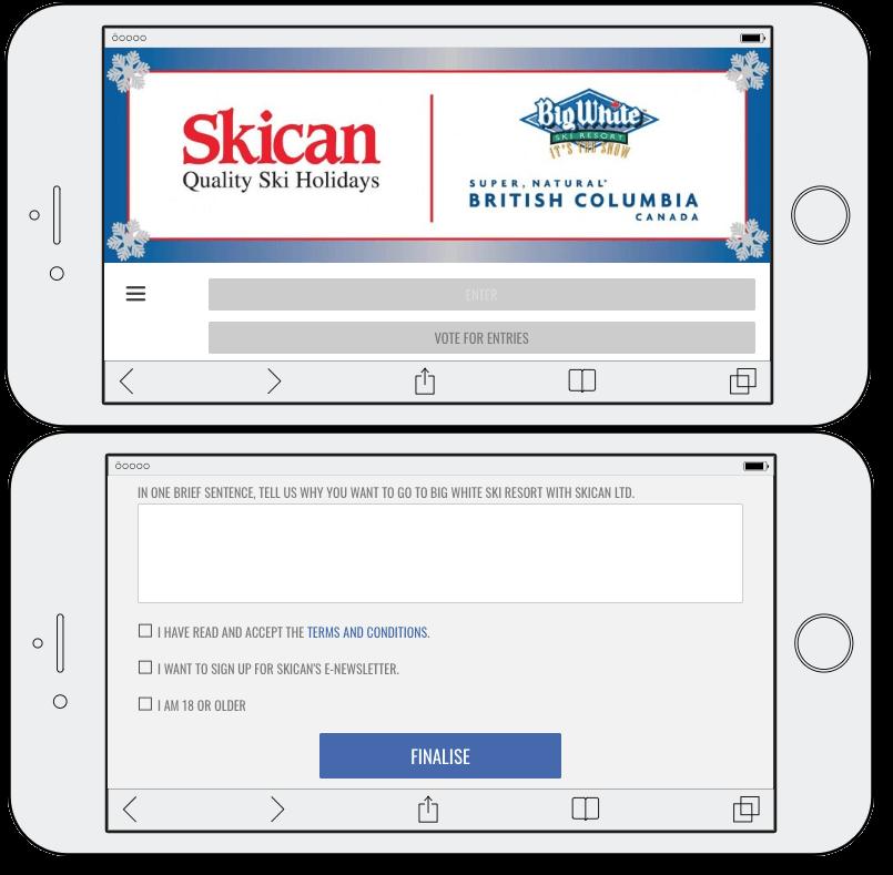 winter sports survey promotion idea