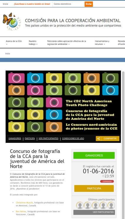 CCA_Concurso_en_web