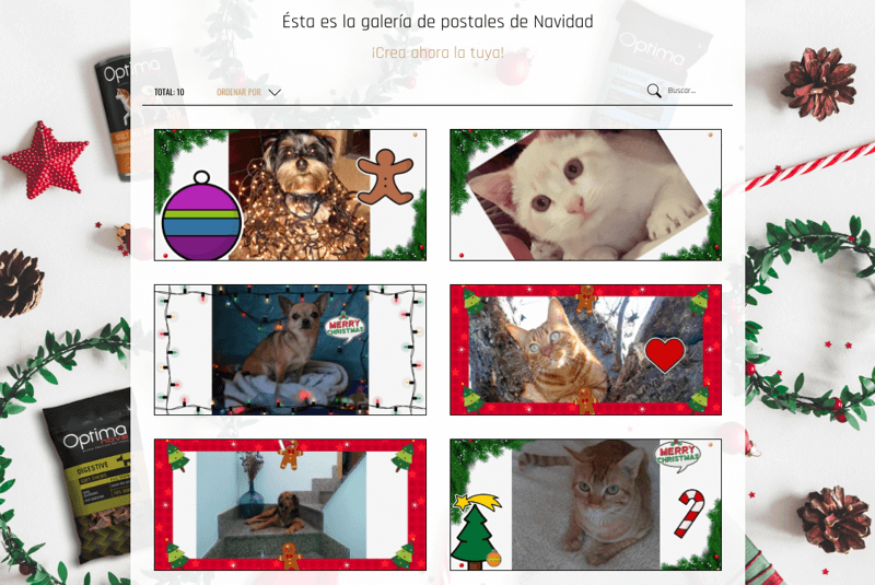 concurso fotos animales Navidad postales digitales