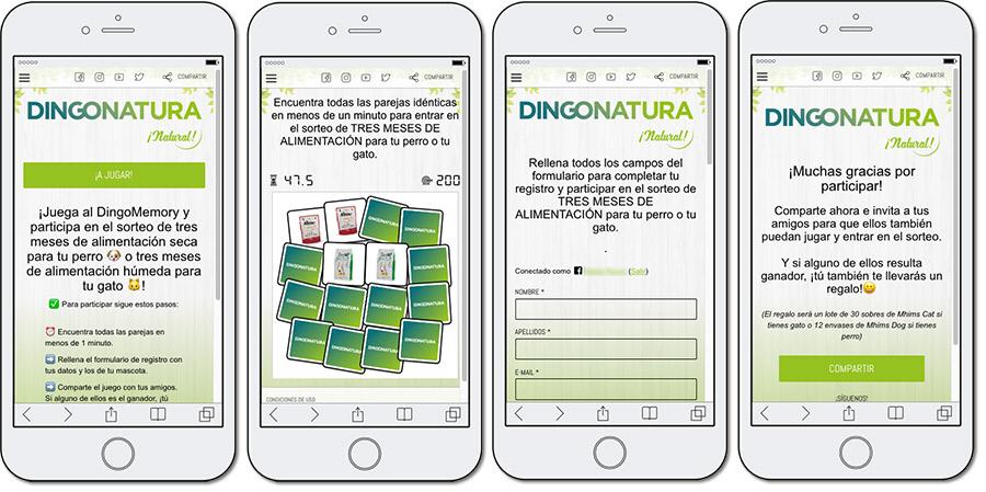 ejemplo de memory de Dingonatura