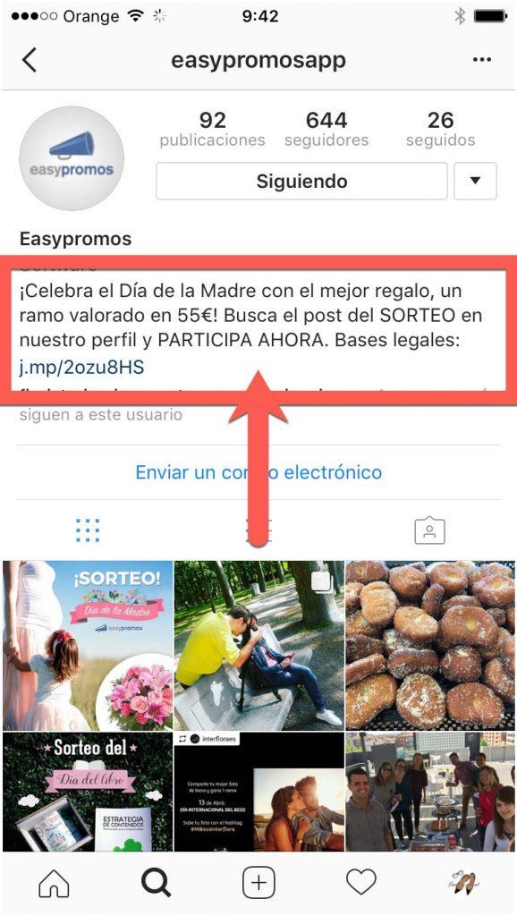 ejemplo-bio-sorteo-instagram