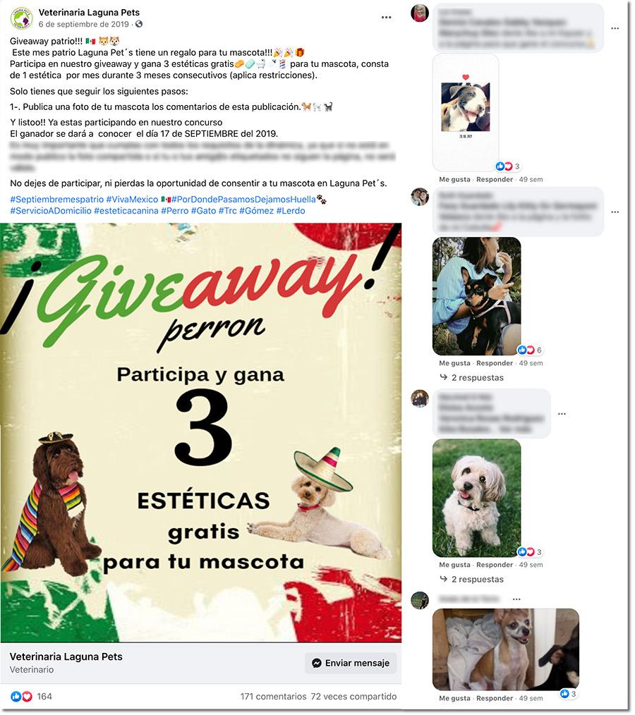 ejemplo de sorteo en facebook para mascotas del mes patrio