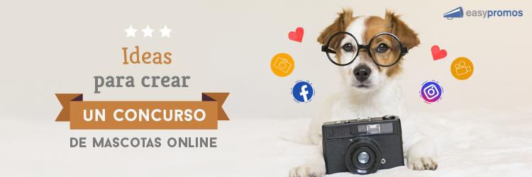 ideas para tu concurso de mascotas online