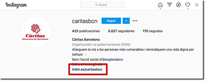 ejemplo de difusión de un libro en la BIO de Instagram