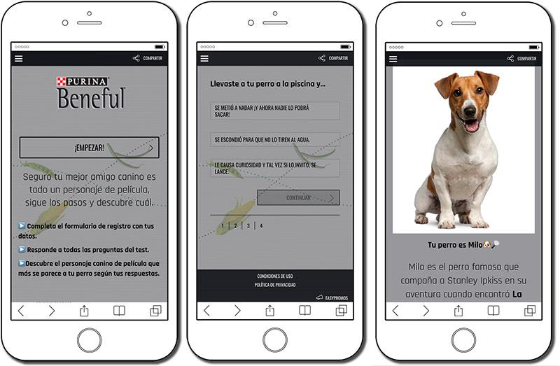 ejemplo de test de personalidad para perros