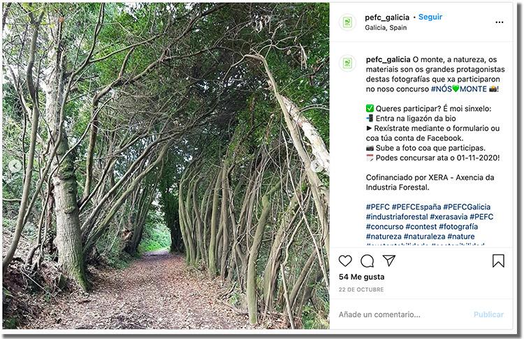 ejemplo de difusión de un concurso de fotos en instagram 02