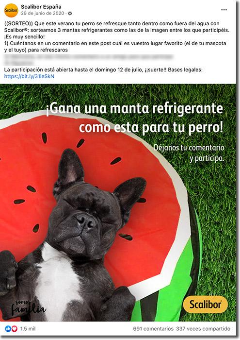 ejemplo de sorteo del día del perro en Facebook