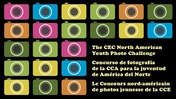 A Multi-Lingual Photo Contest helped reach young people all over North America